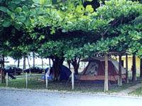 <a class='Link' href='click.asp?local=Capa2, Litoral Norte&IDCadastro=2346' target='_blank'><img src='http://www.guialitoralnorte.com.br/icones/busca_oferta.gif' width='22' border='0'></a>Camping Pousada Ilha do Mel, São Sebastião